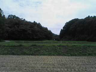 SA330234.w.jpg